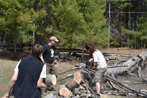 Clearing brush at Camp Lutherlyn