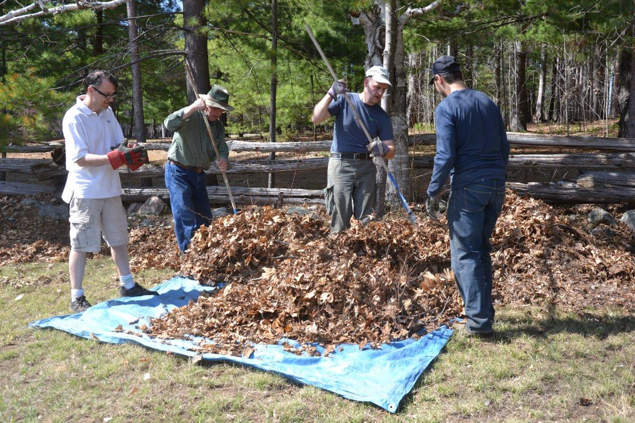 Raking Leaves At Camp Lutherlyn 2015